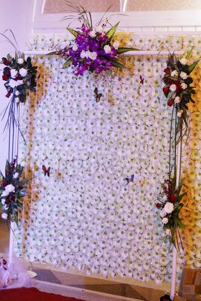 cổng hoa lan hồ điệp 8